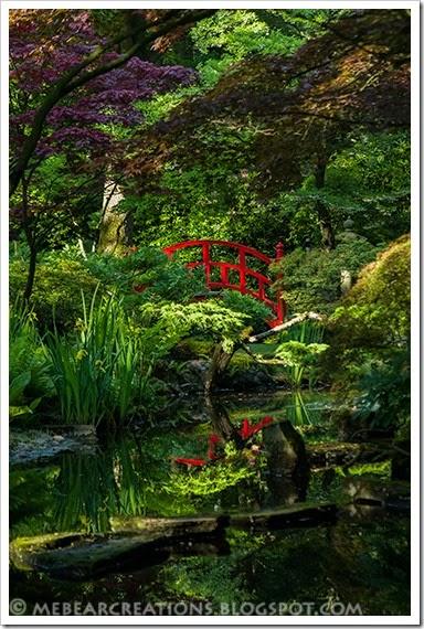 Japanse_Tuin031