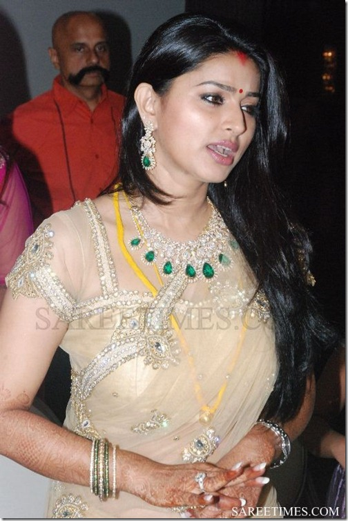 Sneha_Embroidery_Shimmer_Saree (3)