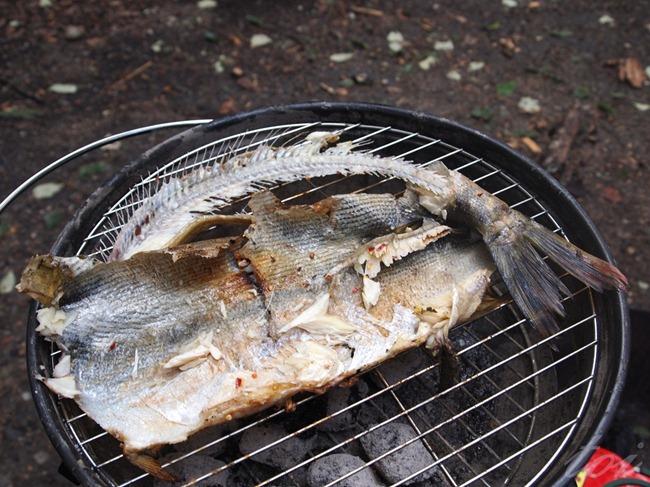 finishedfish