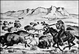 Le massacre des bisons en Amérique-9