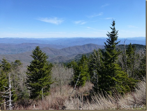 Clingmans dome_004