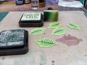 PoinsettiaBox13