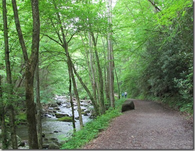 town_elkmont_trail