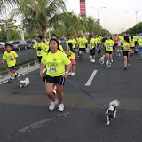 Pet Express Doggie Run 2012 Philippines. Jpg (73).JPG