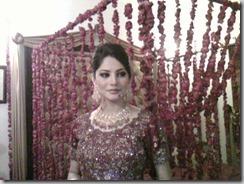 Neelam Muneer Wedding