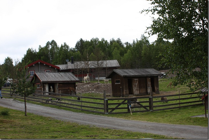 Finnskogen 002