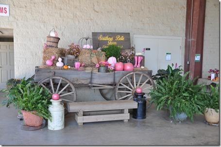 southern belle farm 100611 (41)