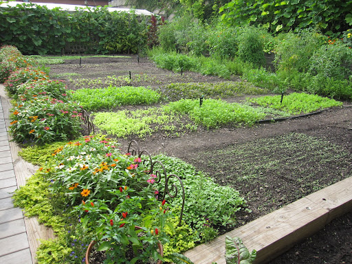 Just behind the house is a vegetable garden.