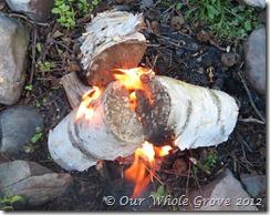 warming fire