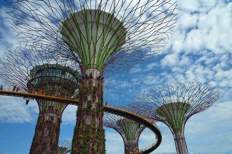 supertrees-singapore-8