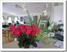 20120122_roses_004