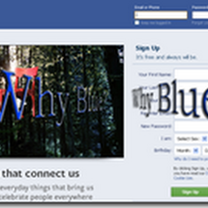 Why Facebook uses Blue Color?