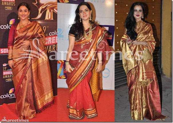 Bollywood_Saree_Fashion_2013(3)