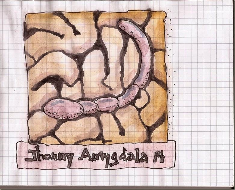 Jhonny Amygdala 14