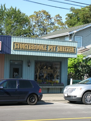 storybrooke pet shelter