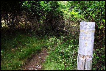 Plan C-Town walk 157