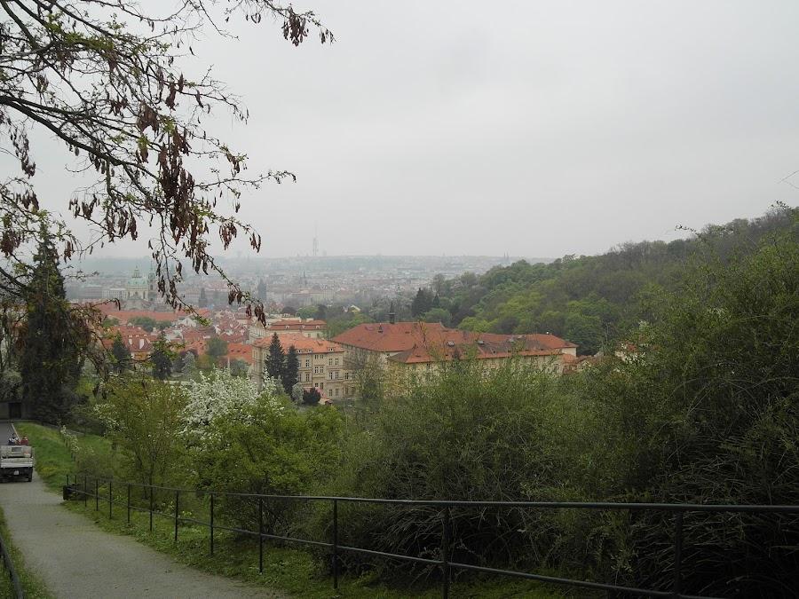 Вид на туманную Прагу
