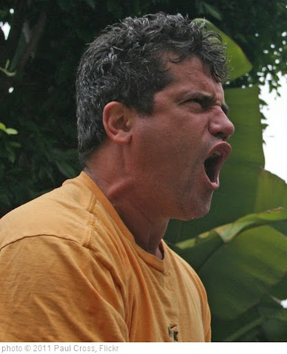 'Yelling Man' photo (c) 2011, Paul Cross - license: http://creativecommons.org/licenses/by/2.0/