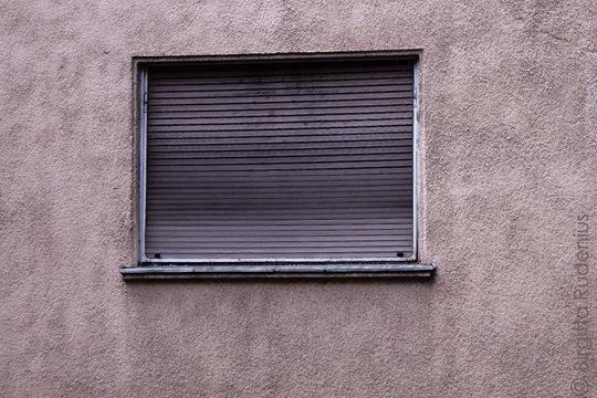 house_20110812_window