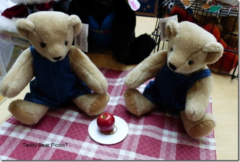 Teddy Bear Picnic?