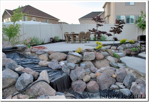 backyard 2011 009