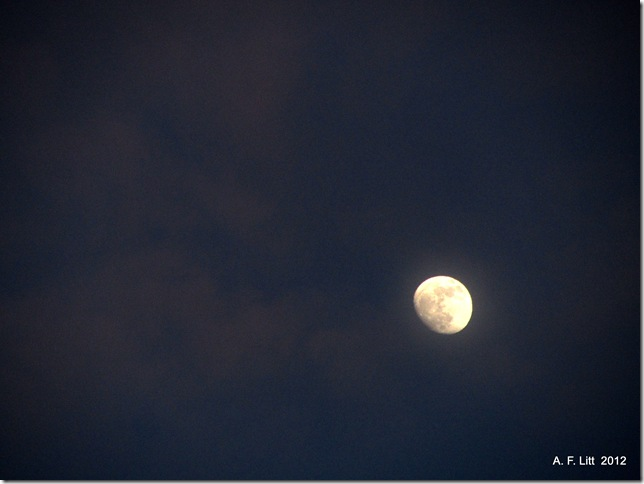 Moon.  Photo of the Day, February 4, 2012.  Gresham, Oregon.  Taken February 4, 2012.