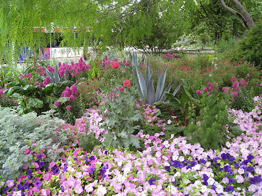 The silver accents are the perfect foil in this sea of pinks and purples. The colorful plantings there really set the garden apart from others.