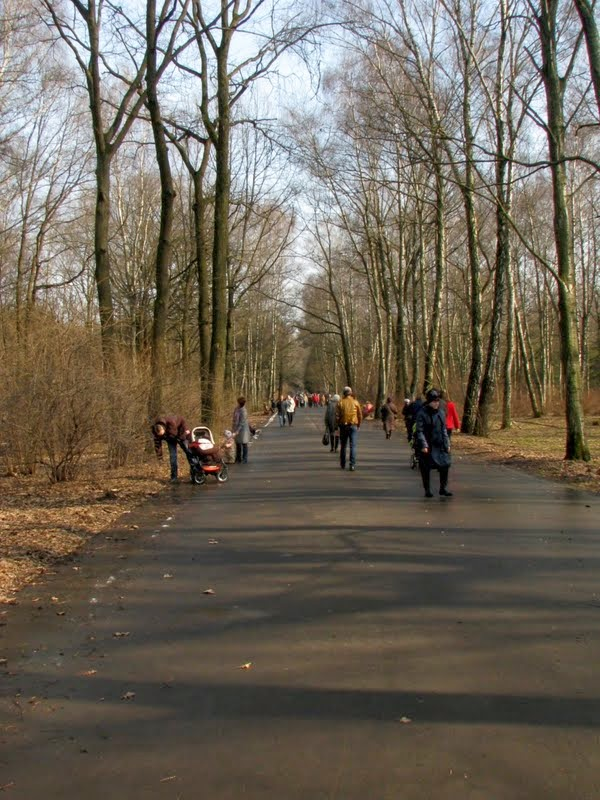 снятие стресса на экотерапии: http://ecotherapy.ru