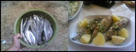 Almocinho - o antes e o depois