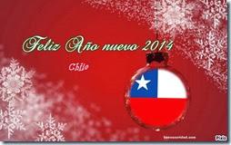 año 2014 chile
