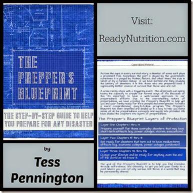 the trailer park homesteader the prepper�s blueprint by