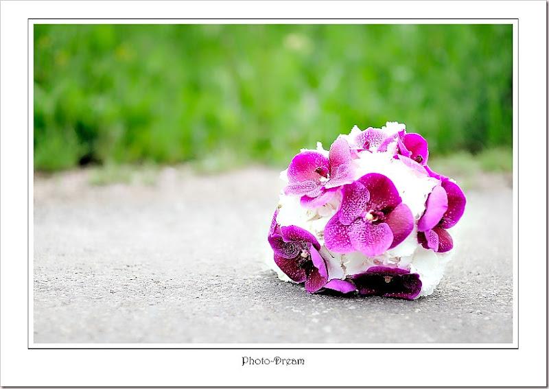 Photo-Dream__285
