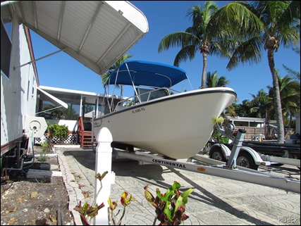 Proline Boat