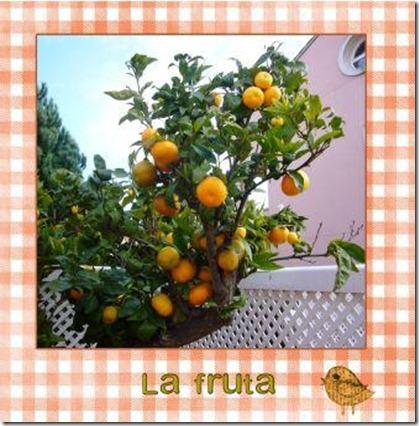 mandarino 2 (page 2)