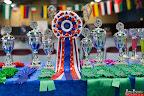 20130511-BMCN-Bullmastiff-Championship-Clubmatch-1474.jpg