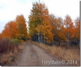 Heyduke© 2014