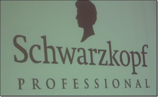 Novo Conceito: Schwarzkopf Professional