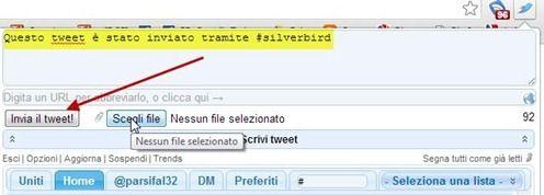 scrivere-tweet-silver-bird
