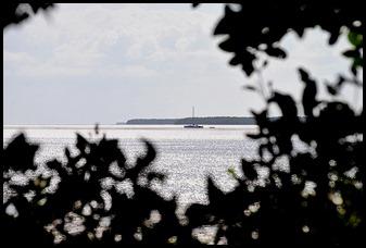 04k - Bay Shore Loop Trail - peaks through the Mangroves