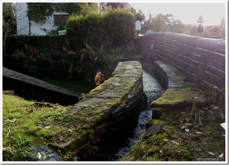 SAM_3961 Mini Aqueduct