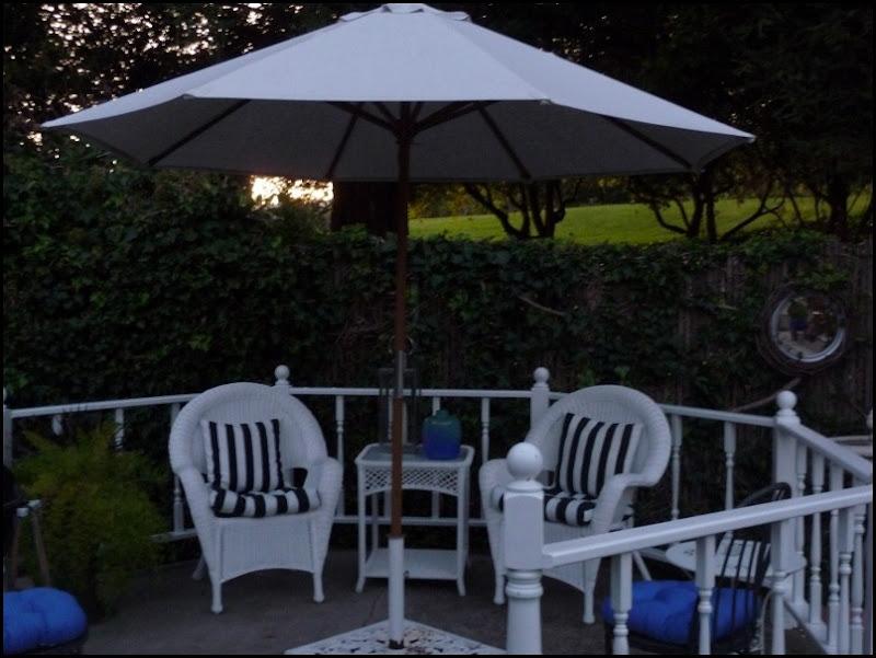 Backyard 025 (800x600)