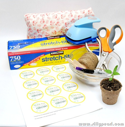 SeedlingTeacherGift1