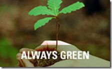 always-green1[1]