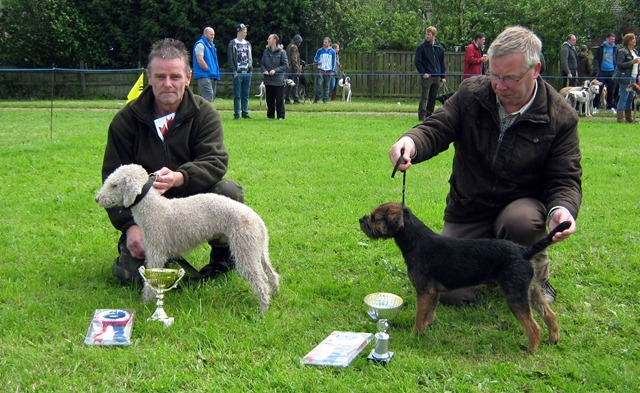 LEEHOLME 2012 CHAMPION TERRIER:  ISSACC & RESERVE: RIP