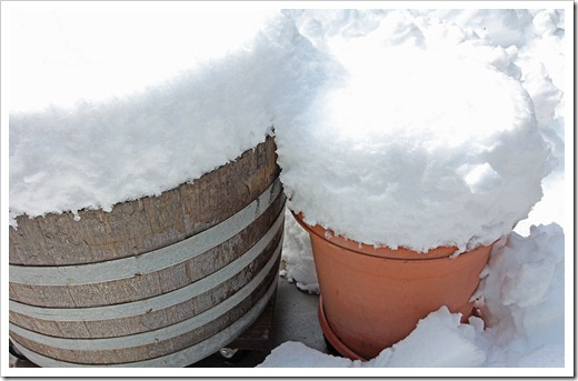 120413_snow10