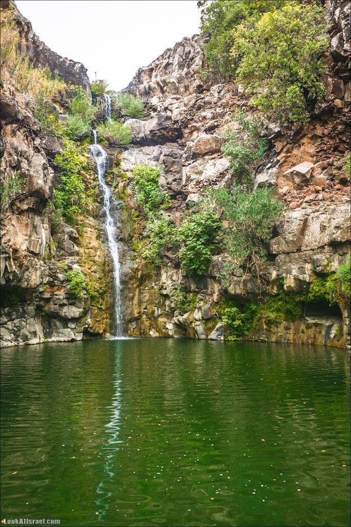 LookAtIsrael.com: Водопад Завитан (israel  путешествия природа парк голанские высоты водопады )