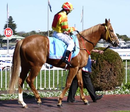 race 4 _miracles _mounting yard 15