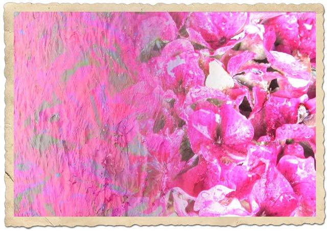 FLOWER-GRADIENT-1