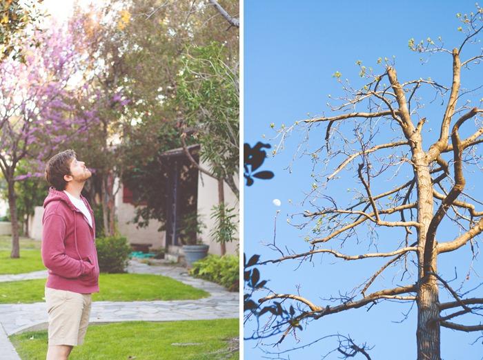 j&tree