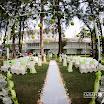 KW&HF_Garden-0046 (FILEminimizer).jpg